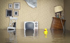 img-blog-Flooded vintage interior.