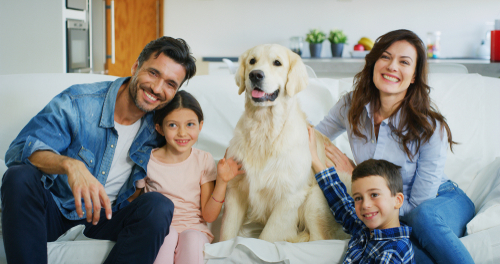 happy family with a dog having fun together in living room-img-blog